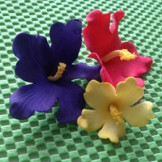 Set 3 cortadores Flor Hawaiana FMM