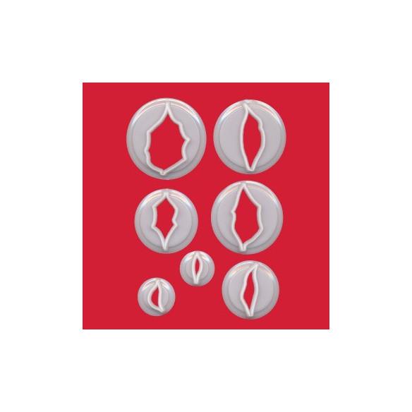 Set 7 cortadores Flor de Pascua - Poinsettia
